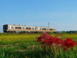 3541C 東浦←亀崎