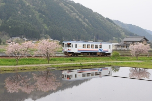 長良川鉄道13レ ナガラ503 万場〜上万場
